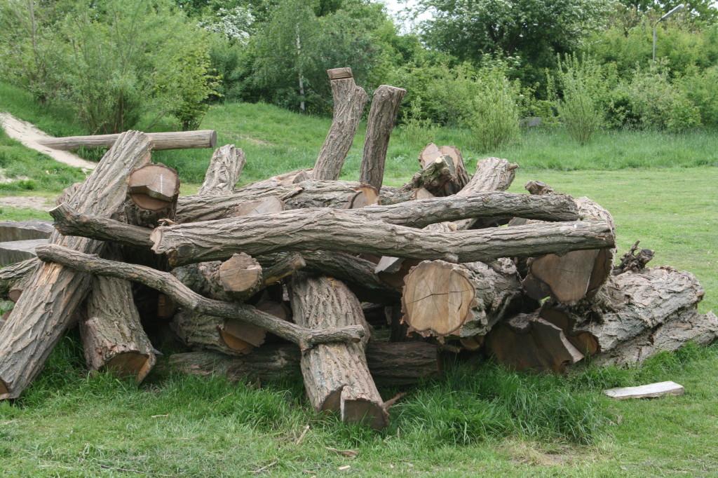 Holzhaufen auf der Kinderwiese
