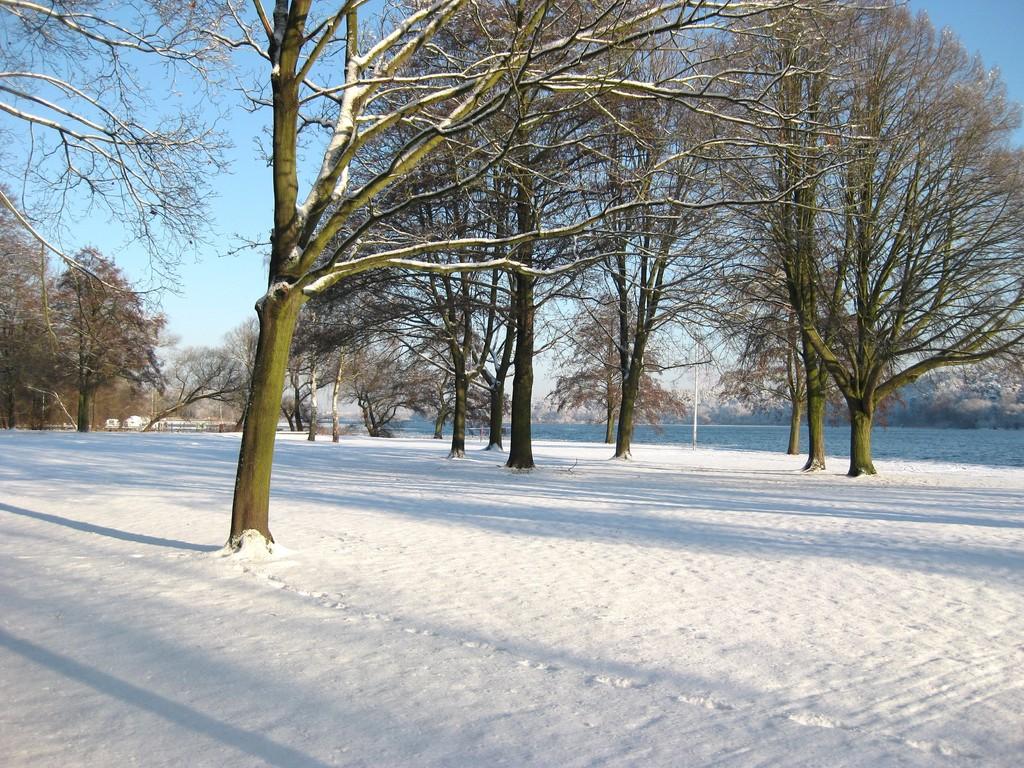 Havelwiesen Januar 2009
