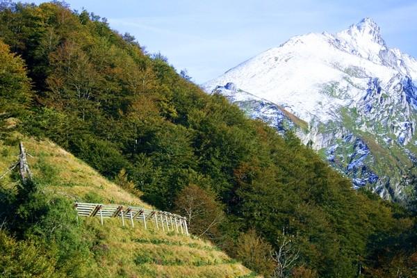Versant des Crêtes Blanches et ses aménagements de protection contre les avalanches. Vue prise du parking des Crêtes Blanches. © C-PRIM 2009