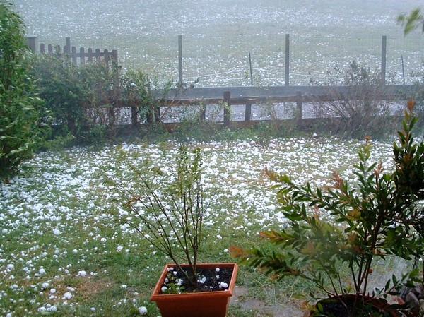 Un jardin de Féas (64) après l'orage de grêle © C-PRIM