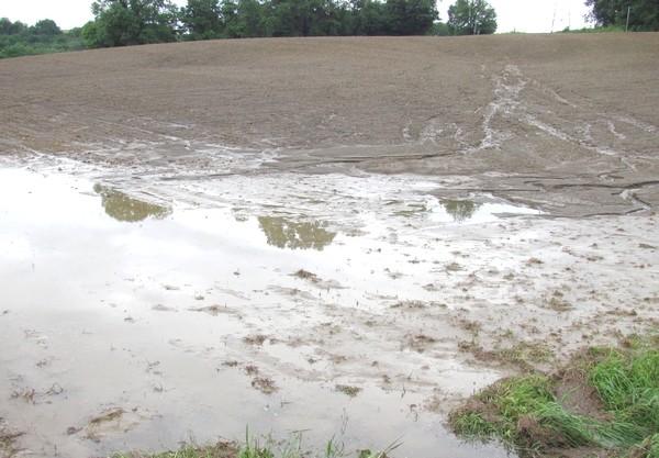 De nombreux champs ont été ravinés.© c-prim 2011