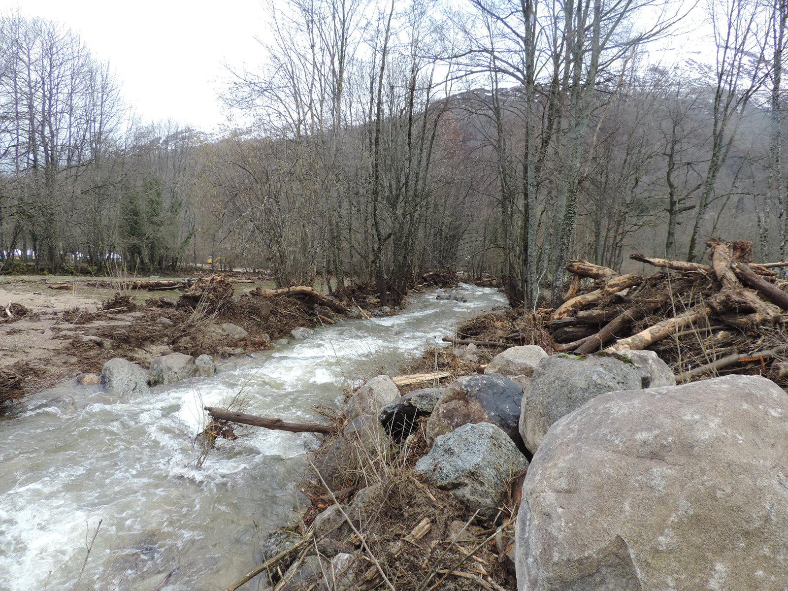 La crue a déraciné bon nombre d'arbres dont les troncs se sont empilés en certains points. © DDT 09