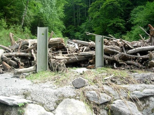 Torrent de la Sourde aux Eaux-Bonnes (64). Arbres bloqués dans le bassin de réception.  © C-PRIM 2009