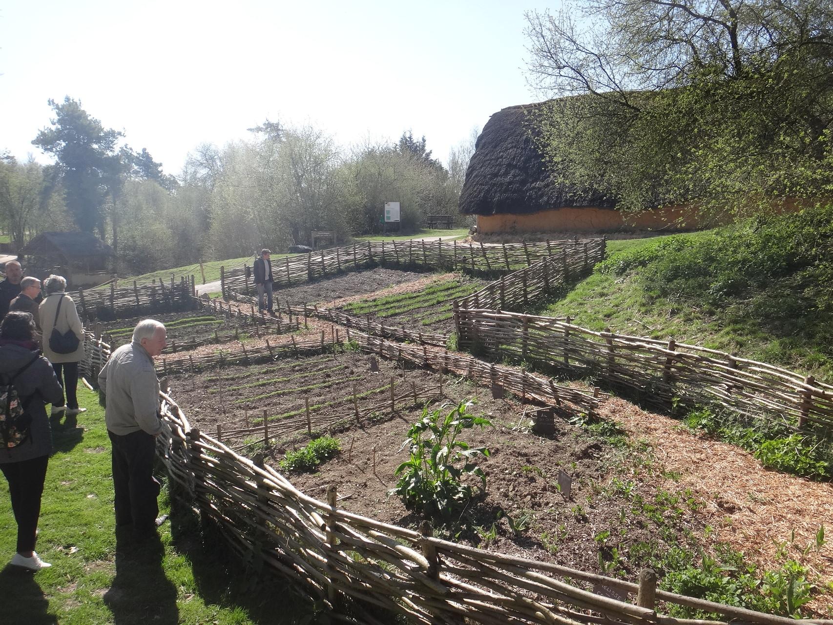 Maison et jardin néolithiques