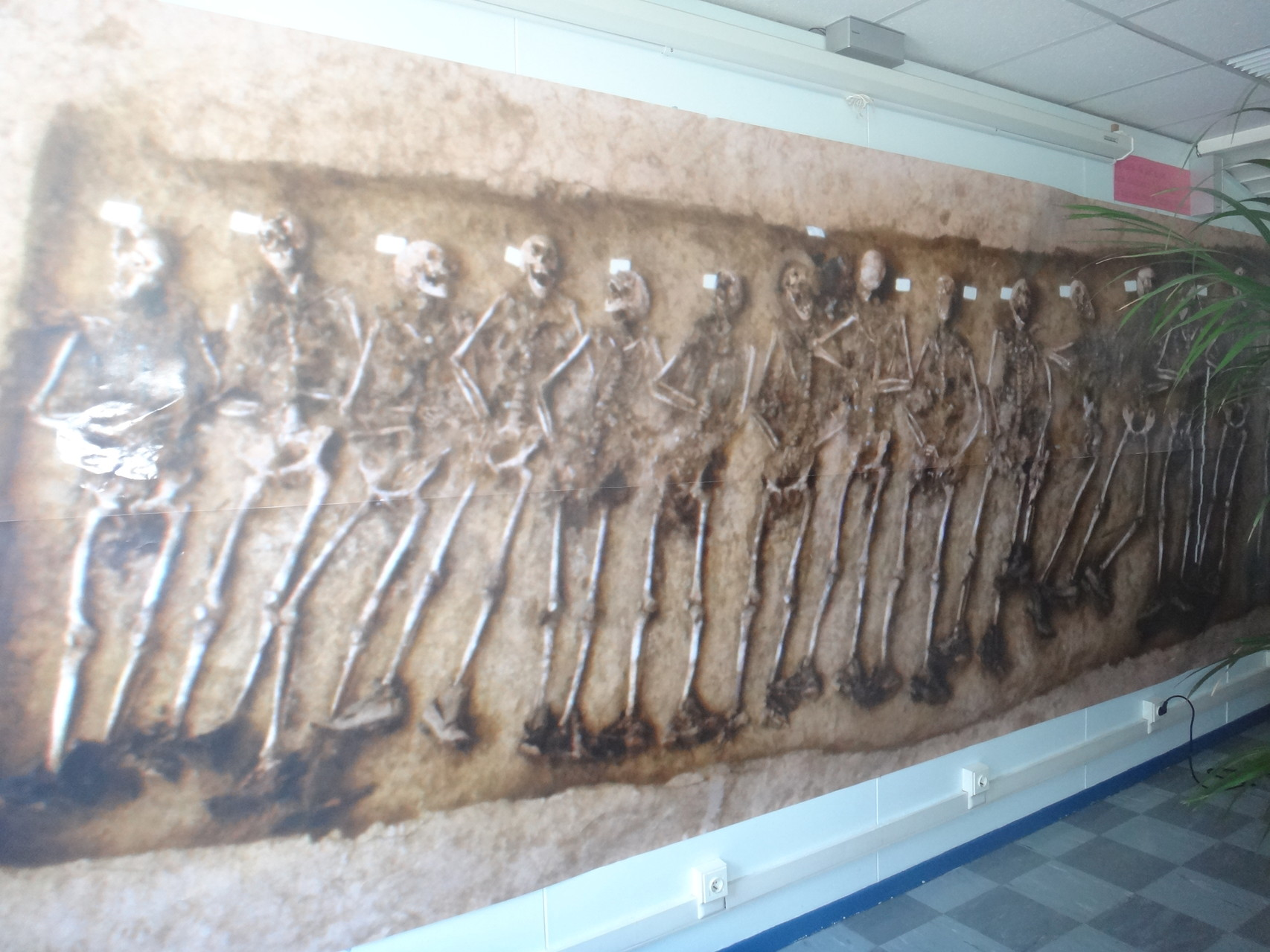 Le Ciras a prêté la grande photo de la tombe des 19 soldats d'Arras qui était exposée au Gaumont pendant le festival.