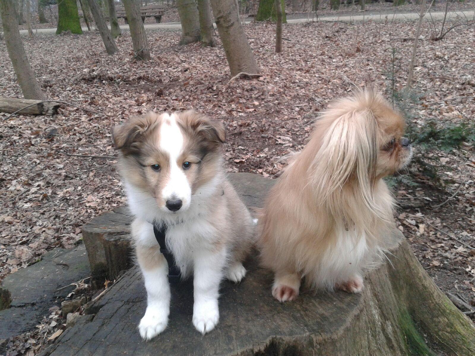 Anouk und Lilly