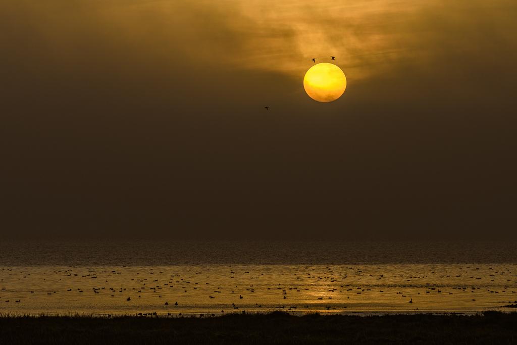 Nordsee mit Saharasand in der Atmosphäre - Michael Greilich