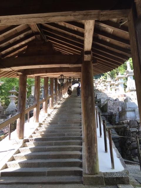 ながーい階段です(長谷寺)