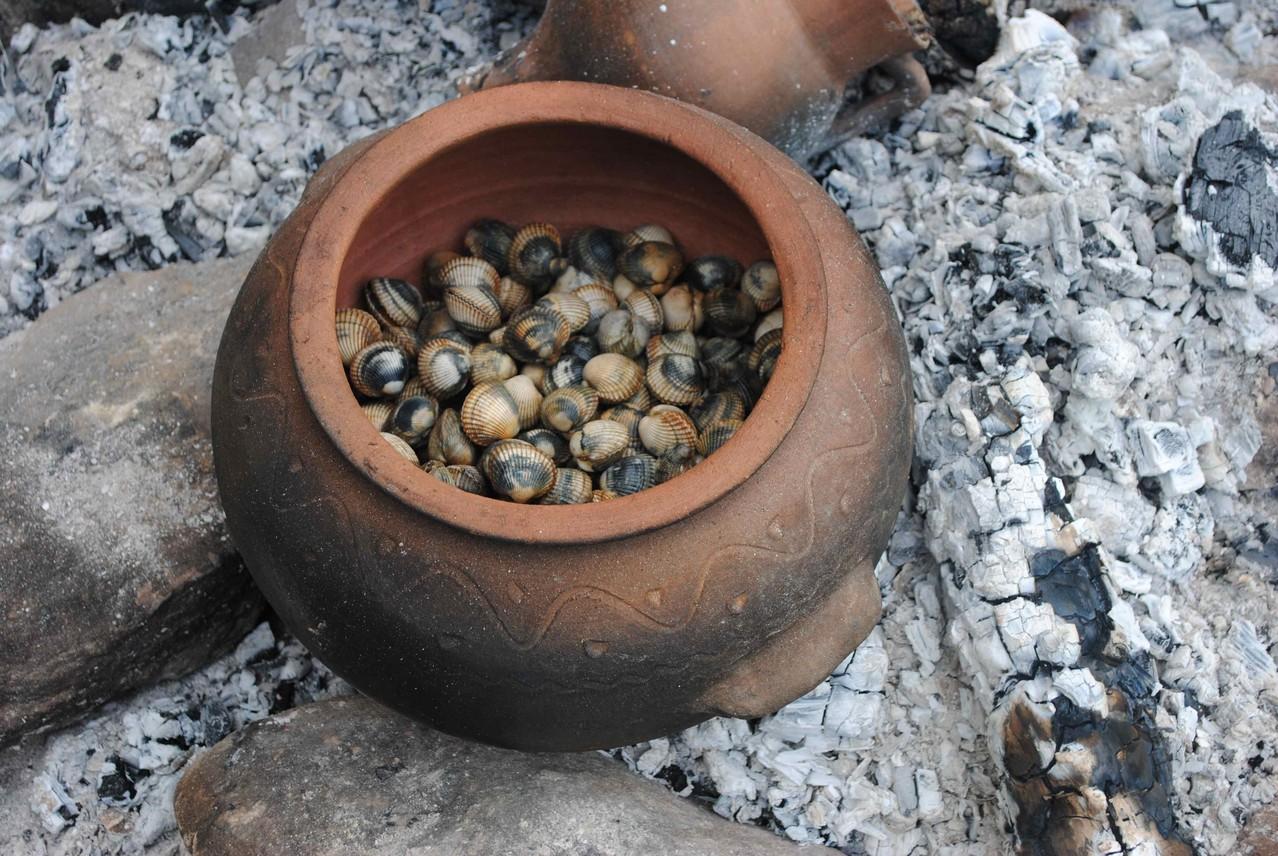Berberechos cocéndose ao vapor nunha ola de cerámica