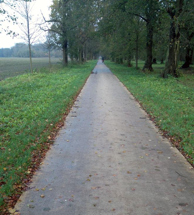 Fahrradweg Golm / Potsdam