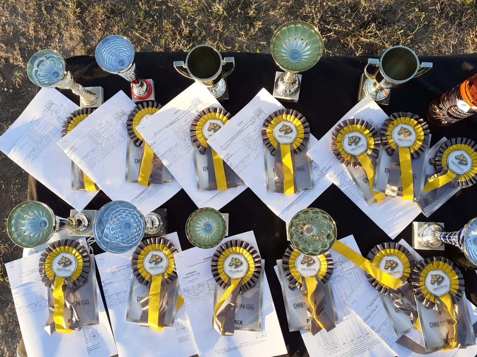 Concours de Dressage Amateurs et Pros