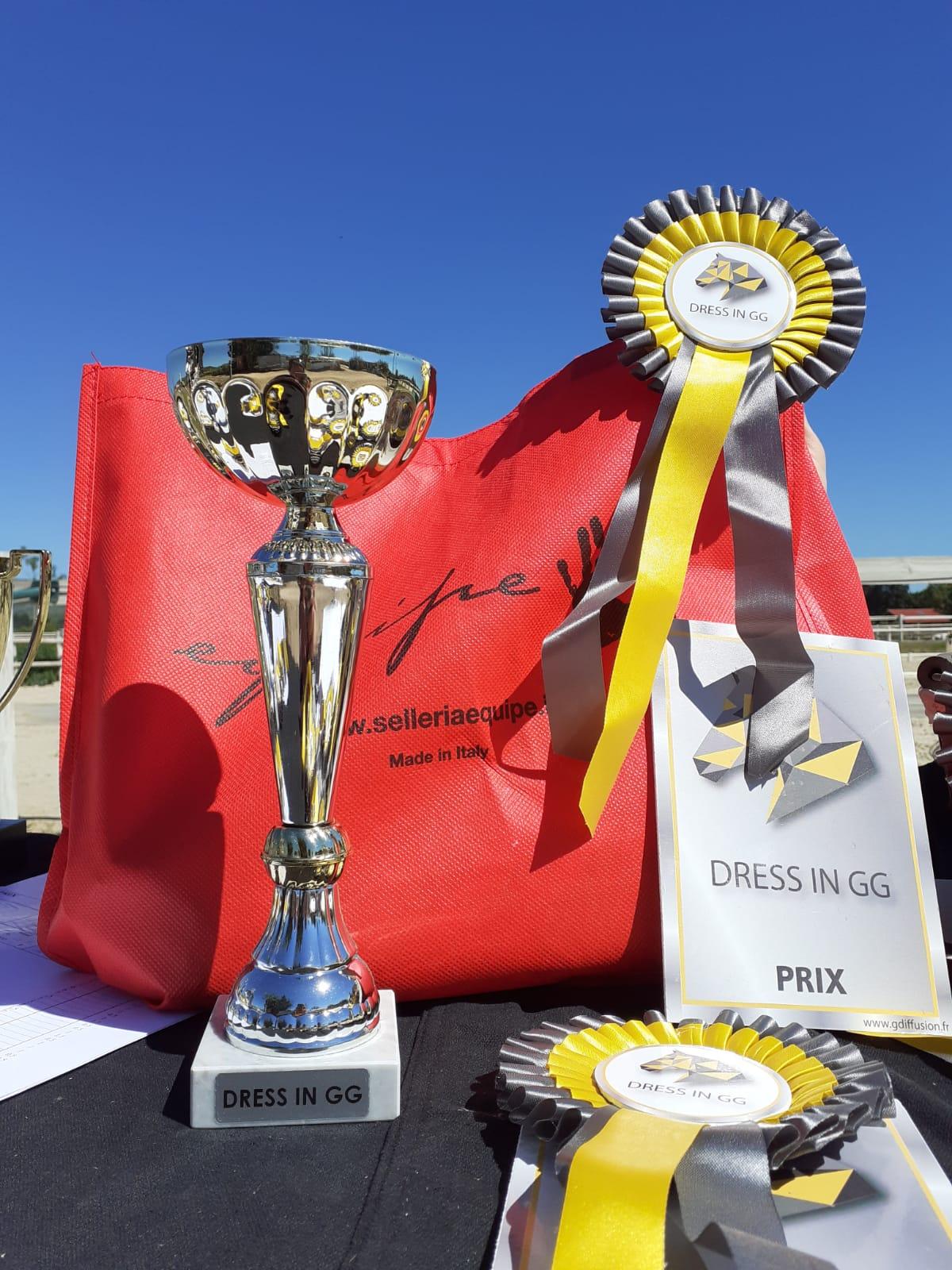 Concours de Dressage Amateurs et Pros 2020