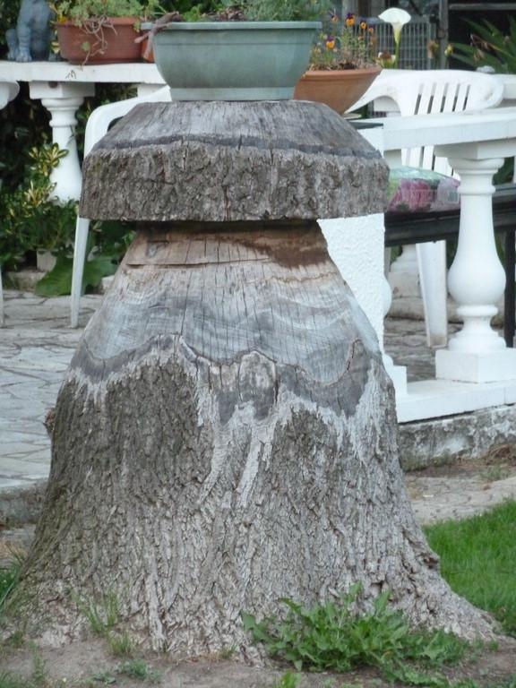 Champignon sculpté dans un tronc