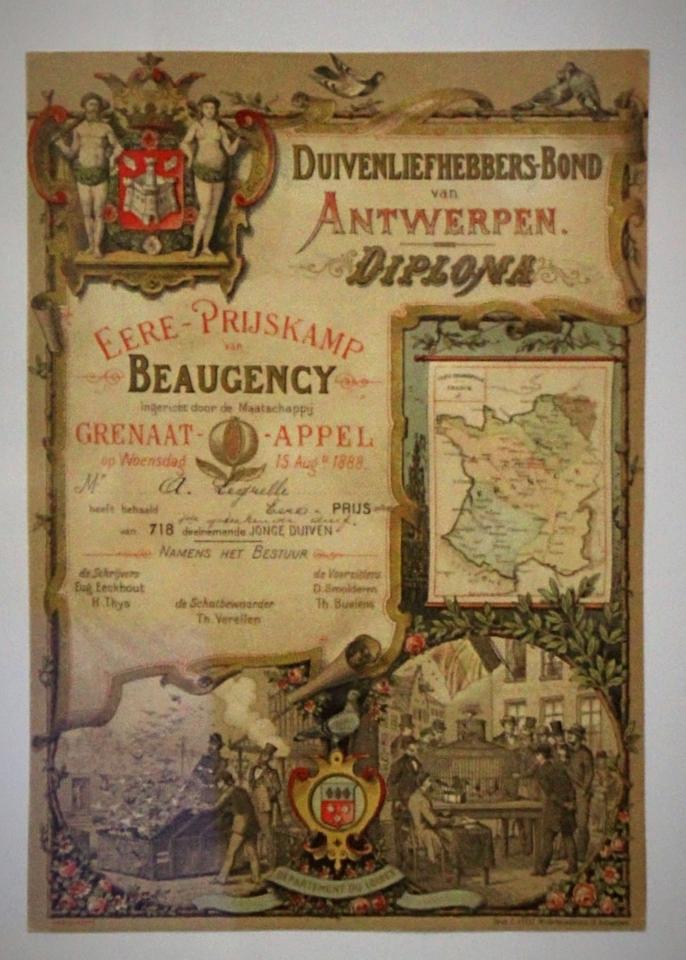 Diplom des Duivenliefhebbersbond Antwerpen aus dem Jahre 1888 für besondere Leistungen mit Jungtauben