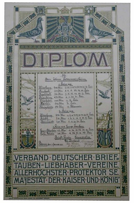 Diplom des Verbandes dt. Brieftauben-Liebhaber-Vereine aus dem Jahr 1910