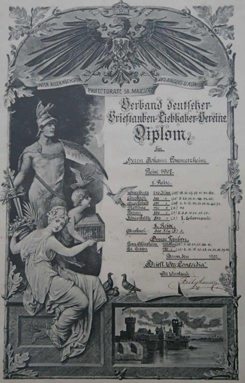 Diplom des Verbandes dt. Brieftauben-Liebhaber-Vereine aus dem Jahr 1907