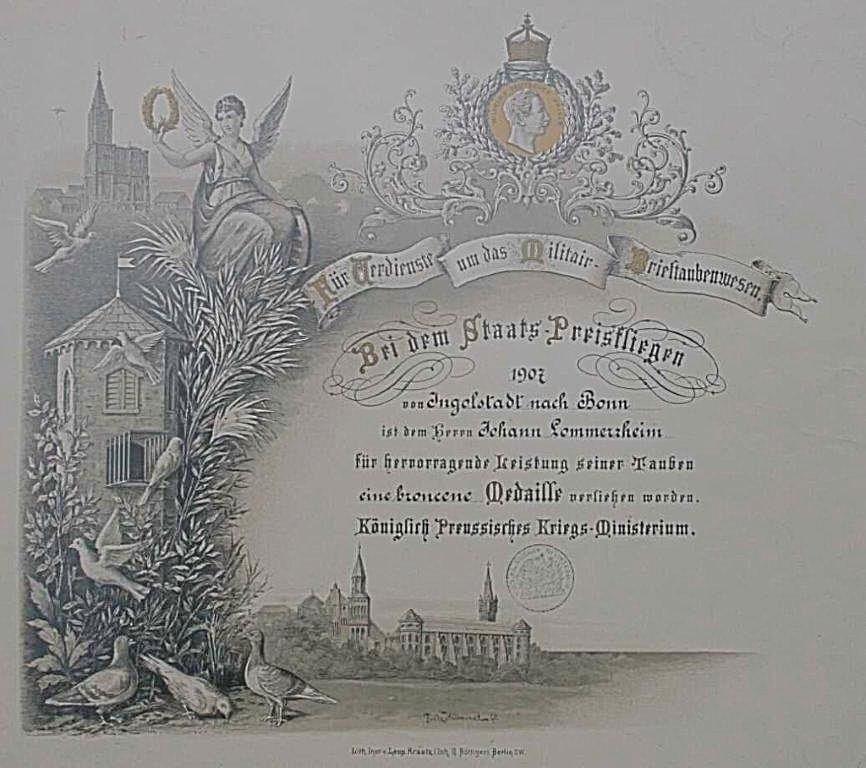 Diplom zur bronzenen Medaille des Königl. Preussischen Kriegs-Ministeriums für besondere Leistungen um das Militär-Brieftauben-Wesen 1907
