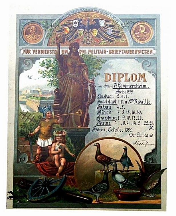 Diplom für Verdienste um das Militär-Brieftaubenwesen aus dem Jahr 1899