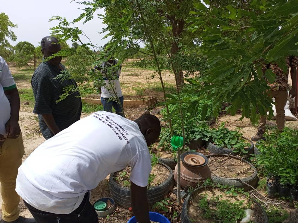 Mission de contrôle annuel à Nakamtenga et Roumtenga