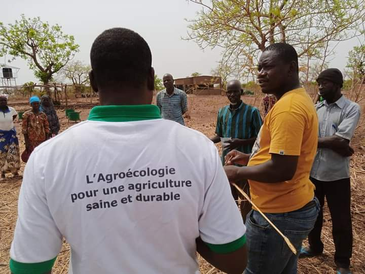 Production écologique Biologique : Le CNABio apporte la bonne information à l'Union Nanglobzanga de Loumbila