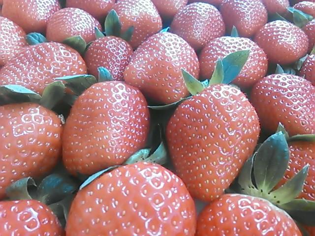 「Nonhoi Strawberry」2