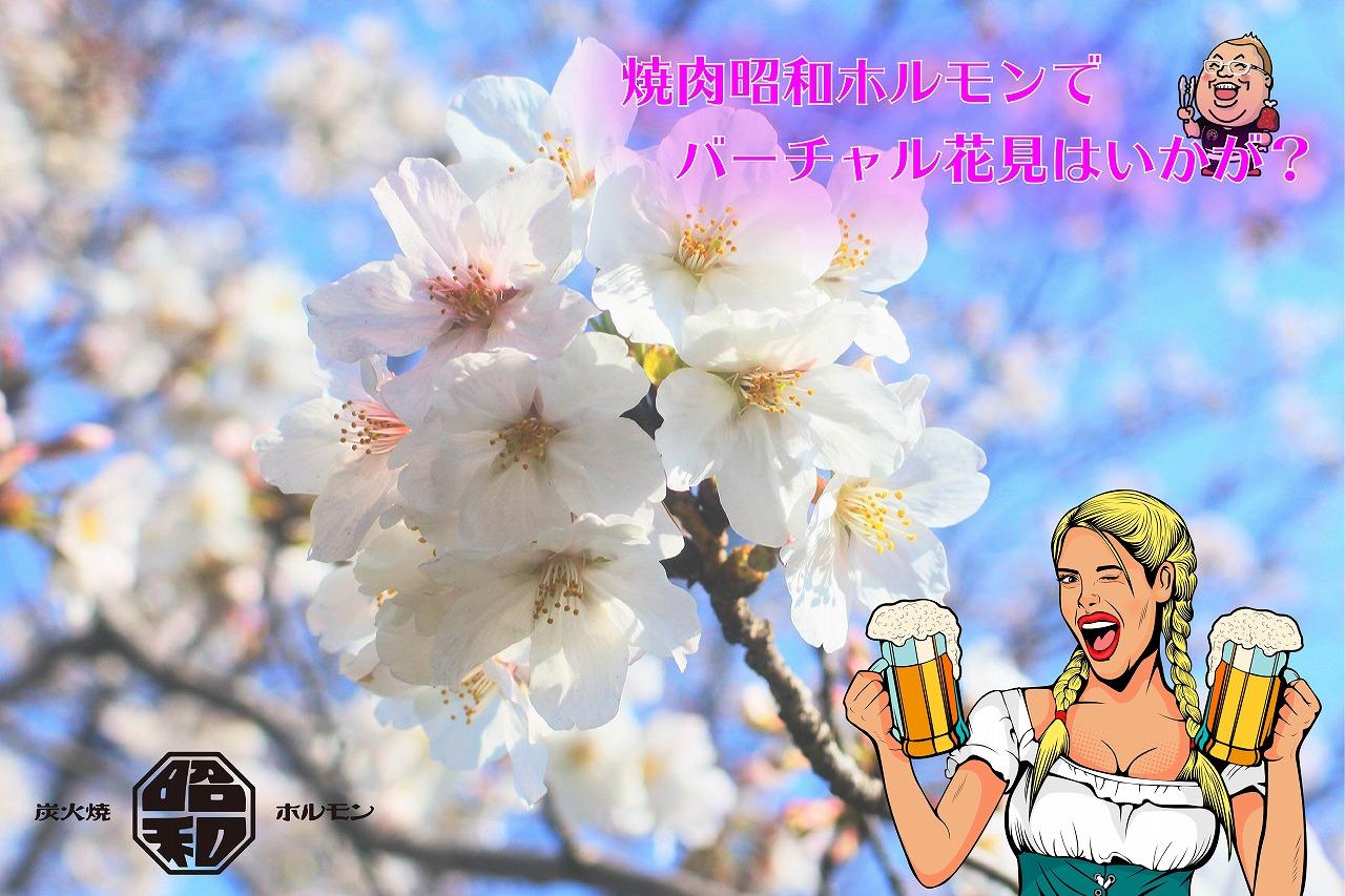 焼肉昭和ホルモンでバーチャル花見しませんか?