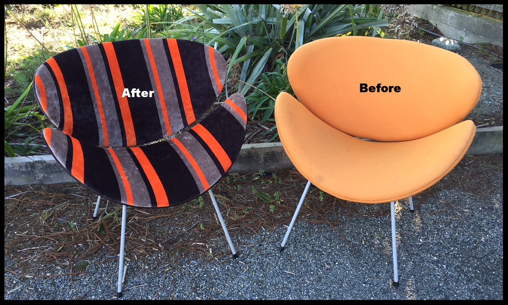 Lip chairs - before & after - Warwick fabric