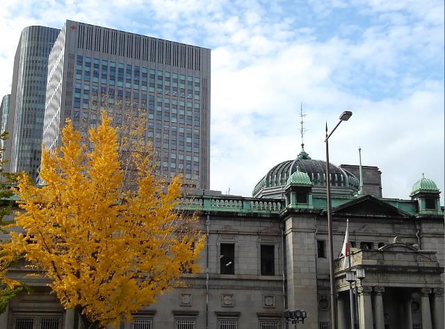造幣局前の銀杏も紅葉の盛りを迎えていました