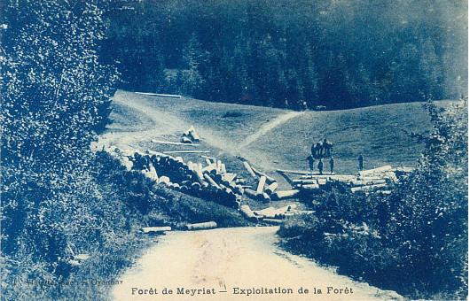 Meyriat: Exploitation forestière