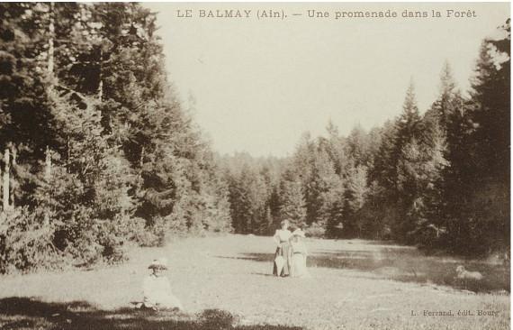 Le Balmay: Promenade en forêt