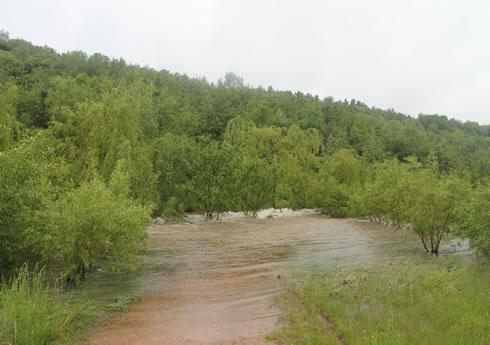 09.06. Unwetter Bad Schlema, Kurpark