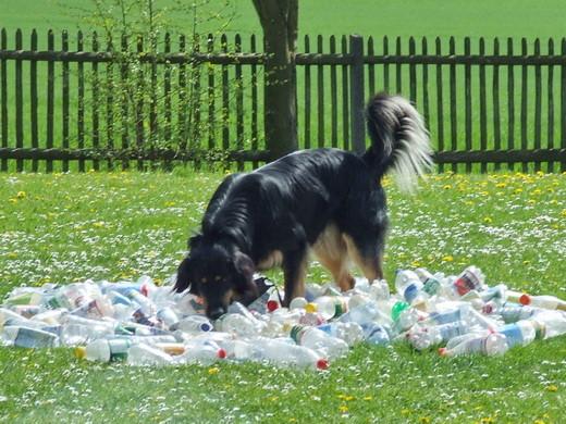 Spielzeug aus den Plastikflaschen holen ist für mich kein Problem.