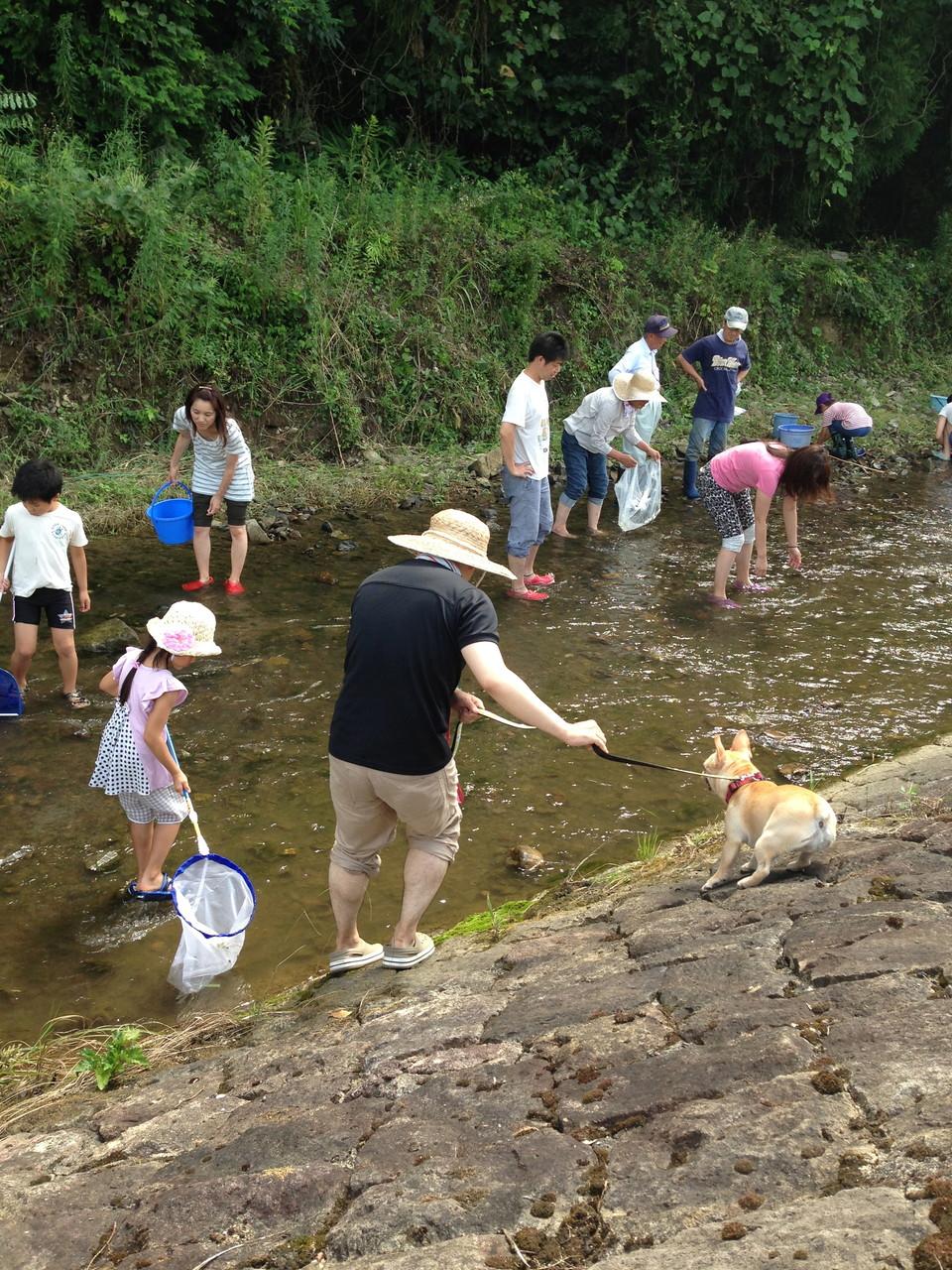 魚とり大会でにぎわっている中、ハナちゃんはお水に慣れようね。