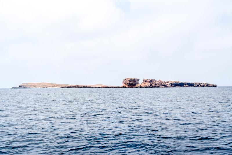12 Days in Oman - Daymaniat Islands