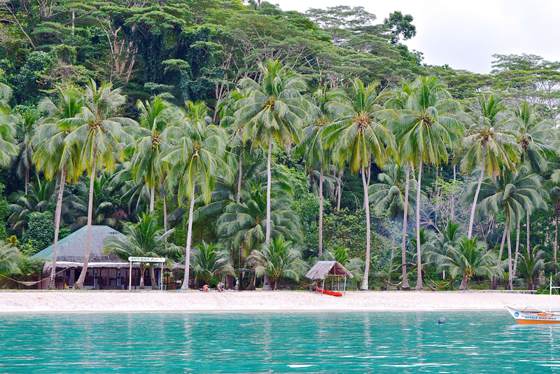 Best Places to Stay - Port Barton, The Philippines