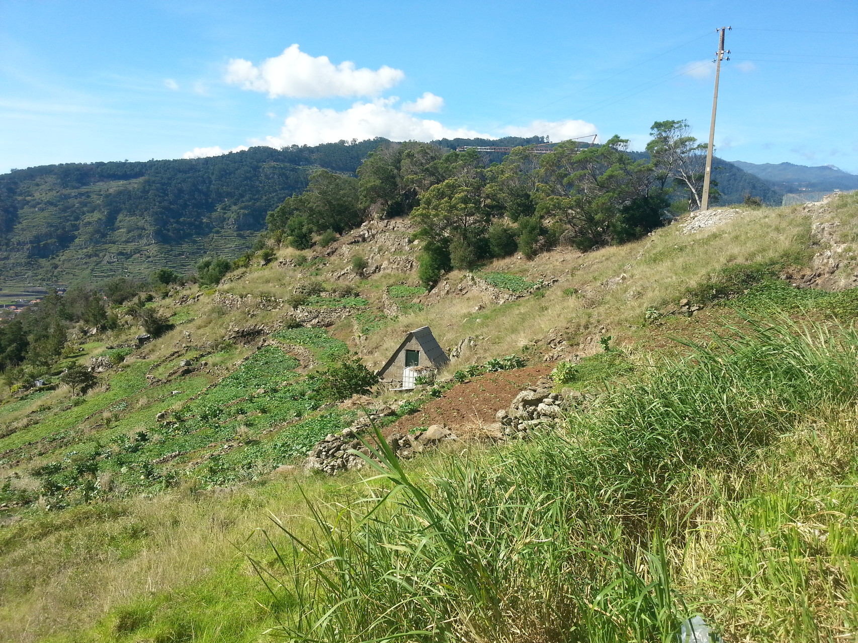 Via Santa Cruz