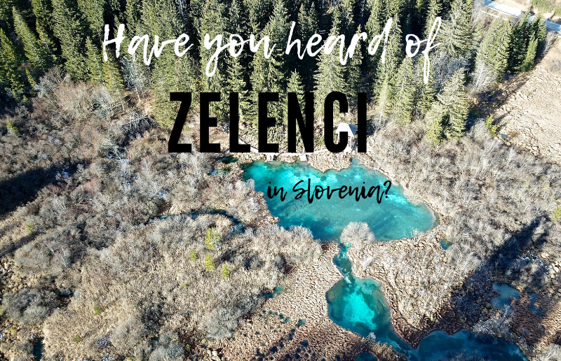Have you Heard of Natural Reserve Zelenci in Slovenia