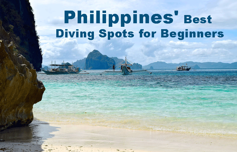 Philippines' Best Diving Spots for Beginners