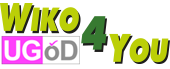 Logo wiko4you