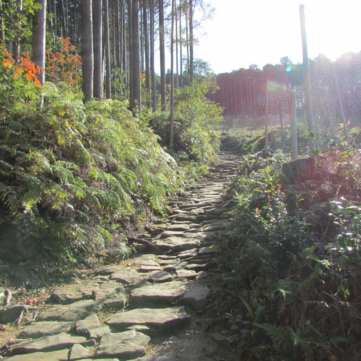 三重・熊野古道