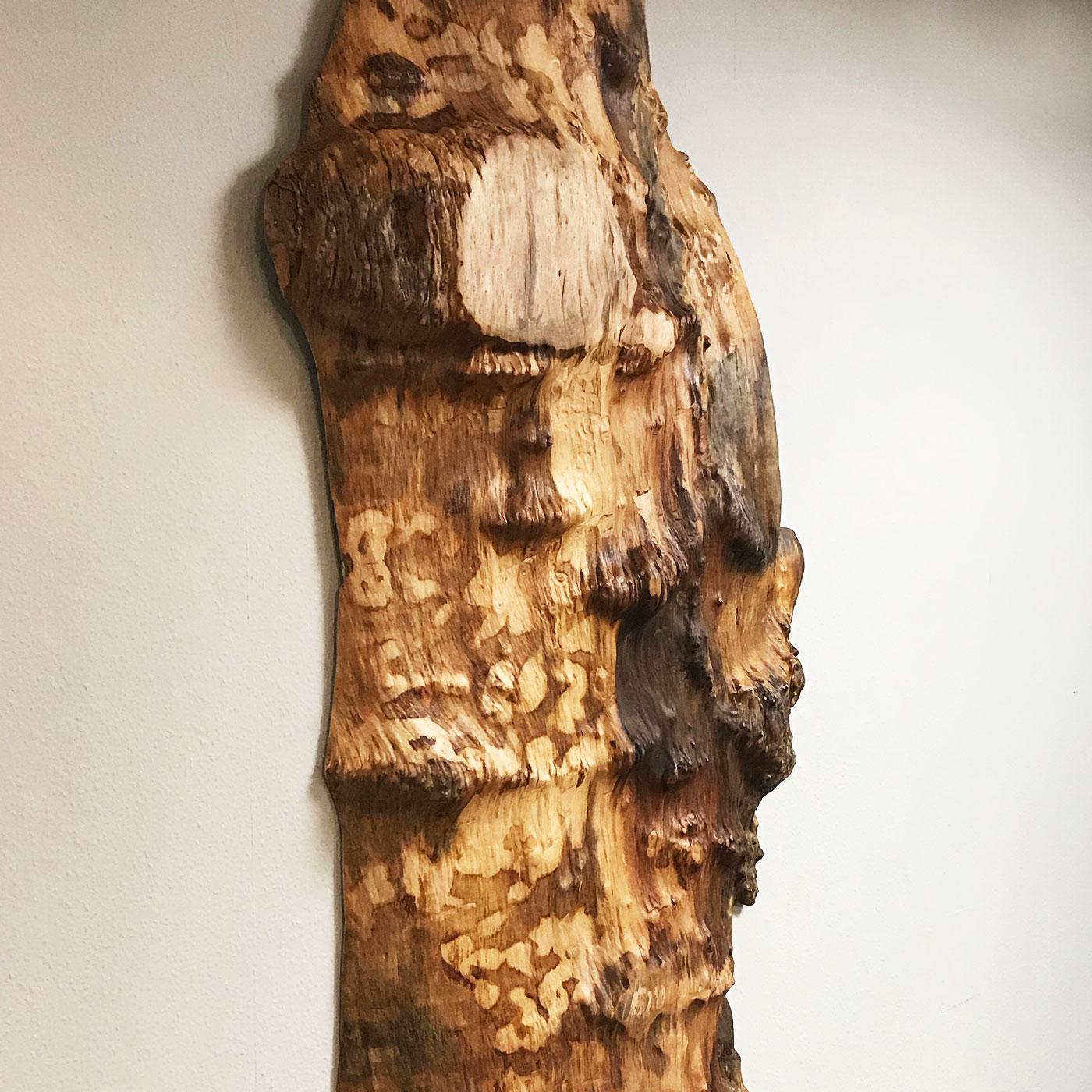 Wandobjekt aus einem Baumstamm, teilweise gewachsene Oberfläche