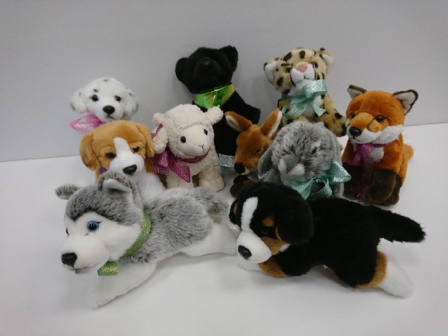 Hunde in unterschiedlichen Rassen, auch bei einem öffentlichen Termin erhältlich