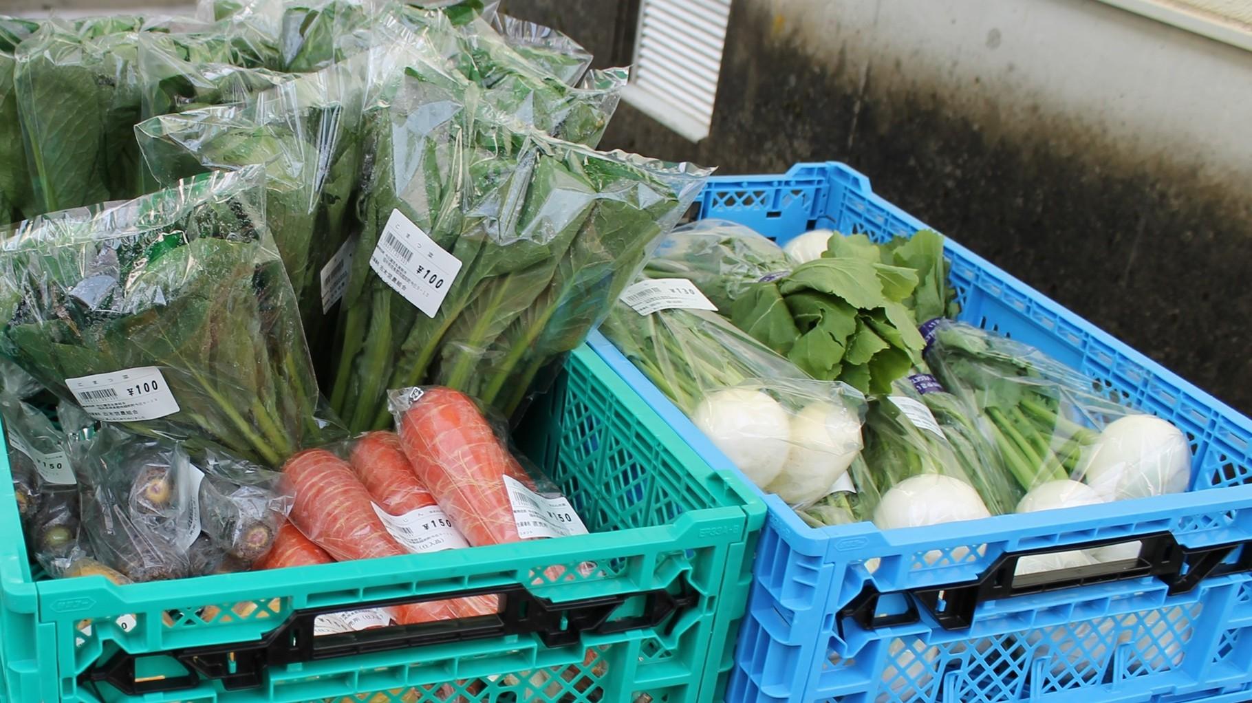 今庄の新鮮野菜が店頭に並びます