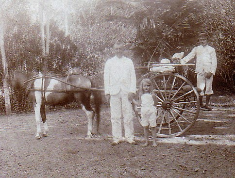 Julie's horse and carriage (1907)