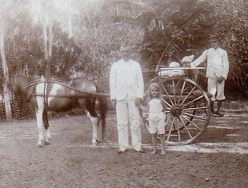 Le cheval et la voiture de Julie (1907)