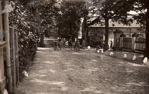 """Die """"belebte"""" Dorfstraße"""