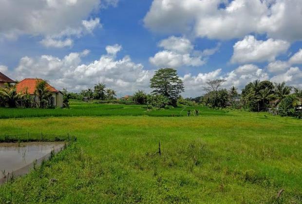 Dijual tanah di Sayan Ubud