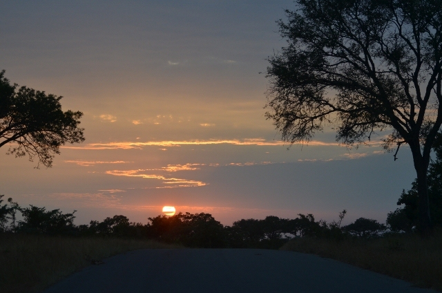 erster Sonnenaufgang im Krüger