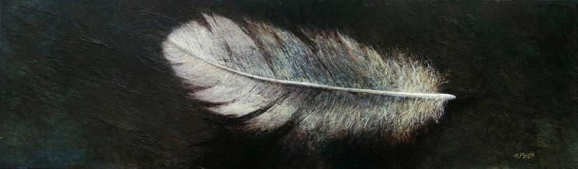 plume - acrylique sur bois - 11x37 cm - 2008 - M.Pavlïn