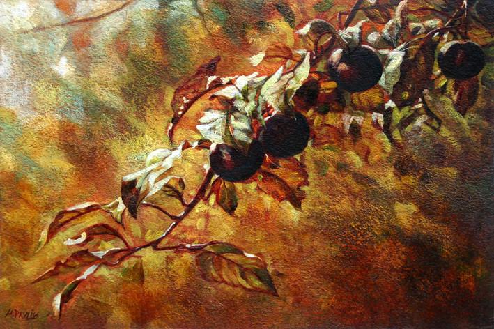 Prunus - acrylique sur papier - 2009 - M.Pavlïn